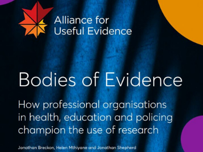 Chartered College of Teaching Blog Bodies of Evidence Image